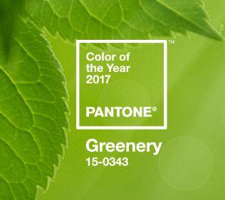 tamypaschuetto_greenery_pantone